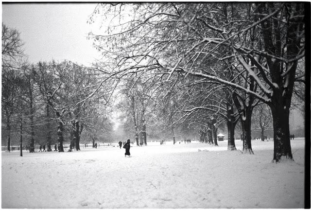 Snow24