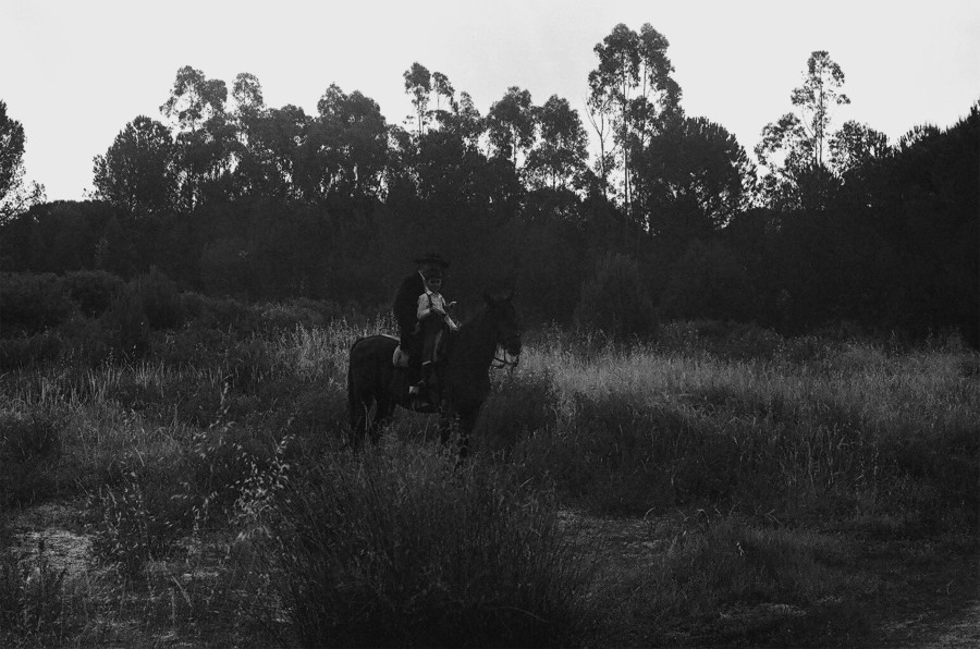 boy and horse 2