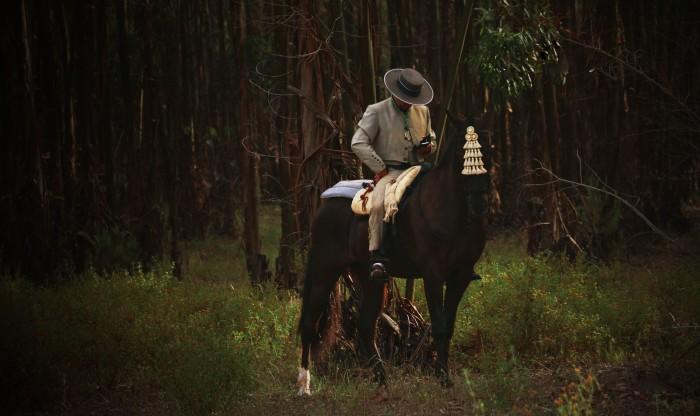 horse phone man 2